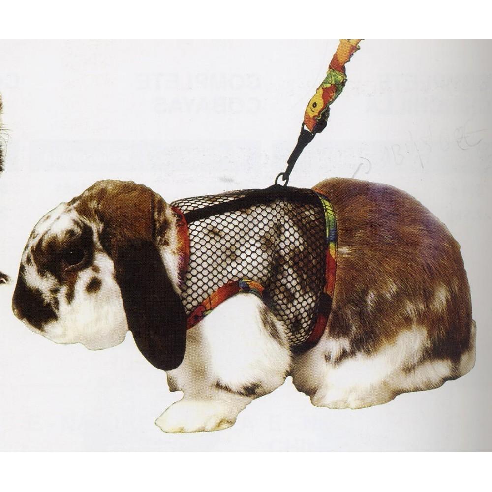 Consolador de jinete conejo para correa