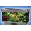 ACUARIO AMBIANCE 101X41