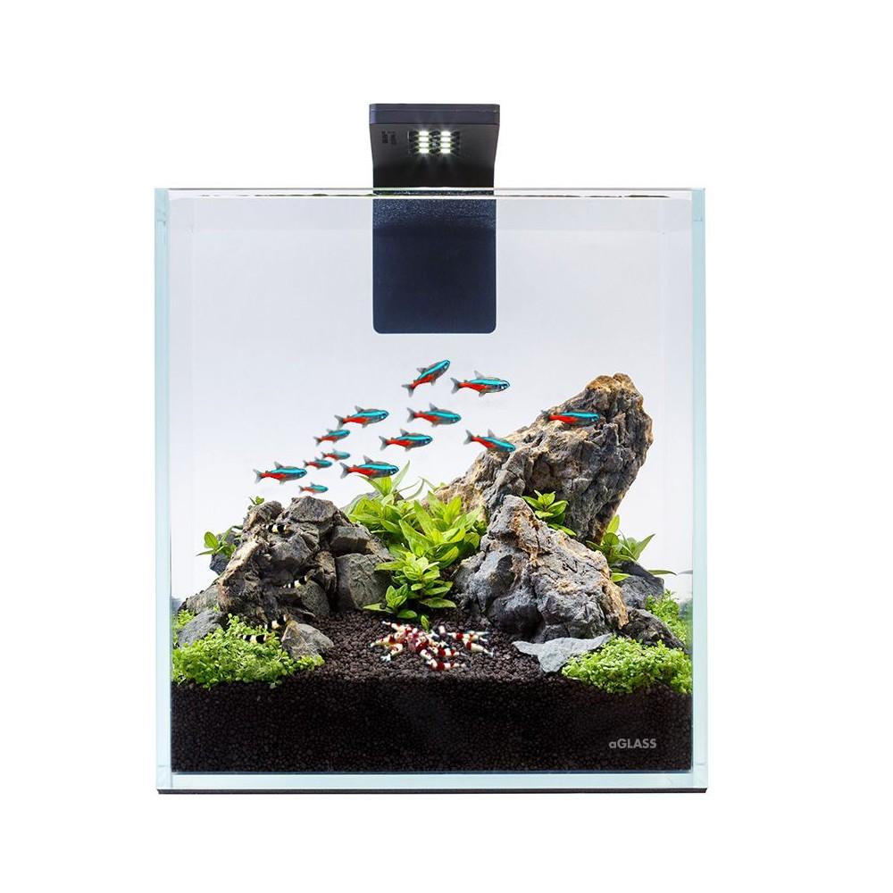 Acuario nano acuario acuario peque o for Acuarios pequenos