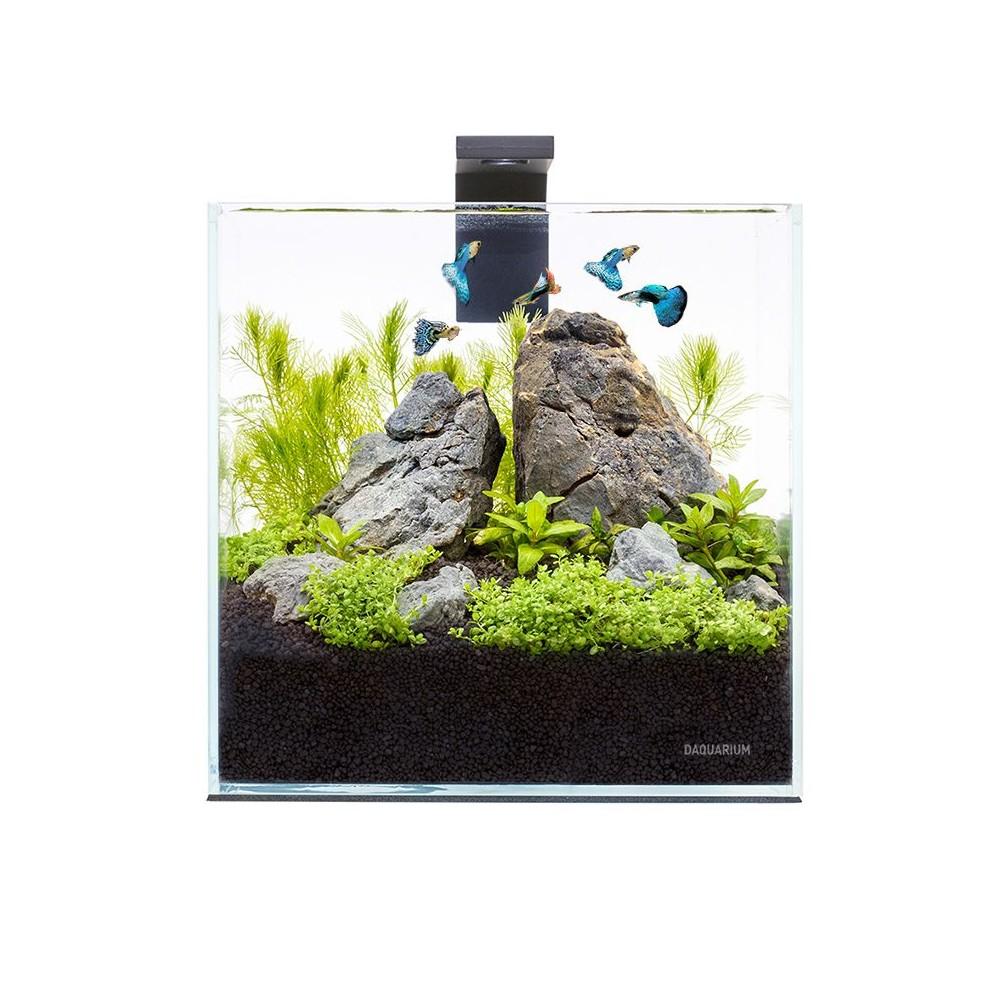 Acuario nano acuarios peque os for Acuarios pequenos