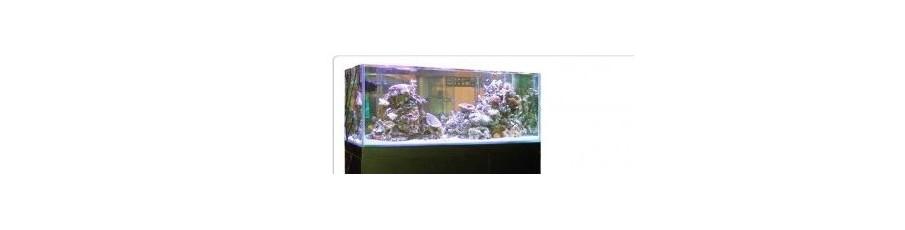acuario GRAN CUBIC EXPERIENCE