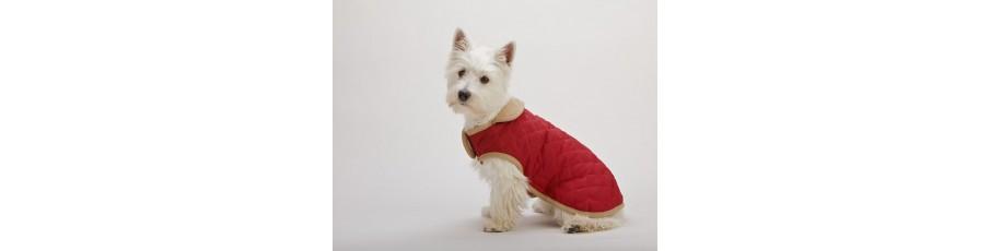 Ropa perros DOG GONE SMART